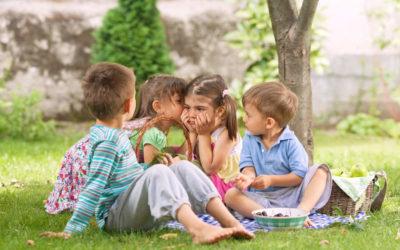 6 uteleker man IKKE bør lage i hagen